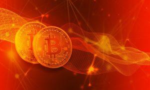 Bitcoin Circuit arbeitet mit Pornhub zusammen